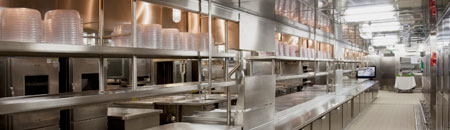 RPlus Walk In Cold Storage Doors, Kitchens
